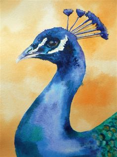 How to Paint a Peacock in Watercolour with Alison Fennell