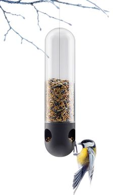 drips-blog:  Eva Solo Bird Feeder Tube