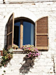 Shuttered Window with Flowers!