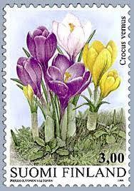 Crocus vernus (Spring Crocus, Giant Crocus) Finland stamp.