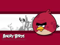 angry birds big brother bird