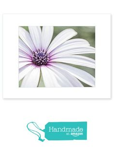 8x10 Matted Photographic Print - Fresh Floral Wall Art, 'Bed of Petals' from Offley Green https://www.amazon.com/dp/B01CVWWVRY/ref=hnd_sw_r_pi_dp_K112xbEHBDQBY #handmadeatamazon