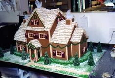 Gingerbread House - Gingerbread house with candy windows,  shredded wheat roof,  fondant shutters,  sugar cone trees, royal icing details.  Made it for the childrens hospital cafeteria.