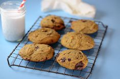 Paleo Chocolate Chip Scones | Paleo Breakfast Recipe