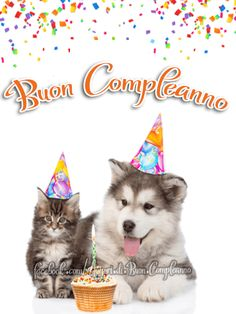 Auguri di Buon Compleano | Buon Compleanno Kylie Jenner, Husky, Happy Birthday, Cards, Happy Brithday, Urari La Multi Ani, Happy Birthday Funny, Maps, Husky Dog