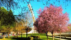 Un parque en la ciudad de León. Foto: Ricardo Castellanos Blanco. [Envía tu foto por correo mailto: zona20@20minutos.es o por twitter #Primavera20m]