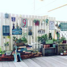 M365.GARDENさんの、ダイソー,ナチュラル,アンティーク,ガーデニング,100均,ハンドメイド,DIY,多肉植物,セリア,ベランダガーデニング,リメ缶,インスタ→M365.GARDENについての部屋写真 ベランダ Diy, Balcony Garden, Garden Plants, Terrace, Natural Garden, Back Patio, Window Boxes, Small Gardens, Photo Studio
