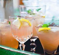 Isig bål på rabarber och giger ale med ingefära och mynta