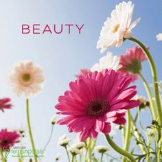 How about sending beautiful surprises early morning? http://www.fnp.ae/ #fernsnpetalsUAE #flowers #beauty #beautiful