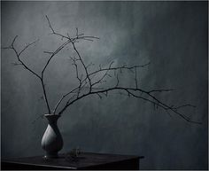 #art #photography #still_life #wabi_sabi #Ikebana #japan #darkness #cold #gray
