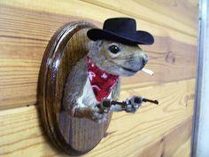 taxidermy cowboy squirrel. you know you want one.