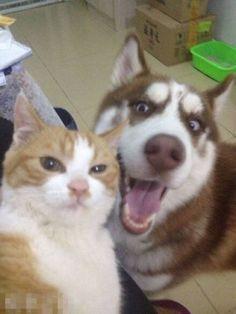 """""""Takin' a selfie wit da doggo"""""""