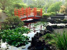 Japanese pond with bridge
