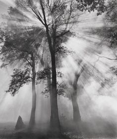 Controlled Burn & Dodge, Ansel Adams