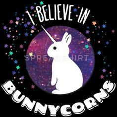 i believe in bunnycorns unicorns bunnies rabbit Hoodies & Sweatshirts - Women's Premium Hoodie