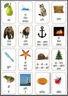 Référent des sons complexes Read In French, French Classroom, French Resources, French Immersion, French Lessons, Teaching French, Teaching Reading, Phonics, Kids Learning