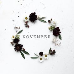 Ah, a new month is here. I don't know about y'all but no matter how cheesy it sounds a new month really feels like time to restart and refresh. Whatever happened the month before leave … Hallo November, Welcome November, November 13, November Backgrounds, November Wallpaper, Calendar Wallpaper, Fall Wallpaper, Iphone Wallpaper, Graphic Wallpaper