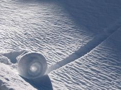 Snow Roller: a Strange Natural Phenomenon