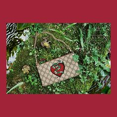 @gucci A limited edition