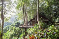 Originally, the resort was a gathering place for the owner, Mr.Chalaluck Bunnag's family. It consists of 2-3 bungalows and a hut as it is being used for a ho...