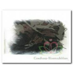 Dons Zwarte veer  #Bloemschikken #Decoreren #Veertjes #Eitjes goedkoop-bloemscikken.nl