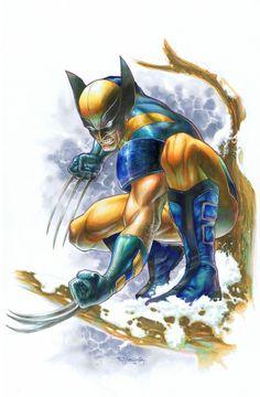 Art Vault — Wolverine by Stephen Jorge Segovia Marvel Comic Character, Comic Book Characters, Marvel Characters, Comic Books Art, Comic Art, Book Art, Character Art, Marvel Movies, Wolverine Art