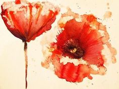 Poppies signify oblivion and imagination in the language of flowers.