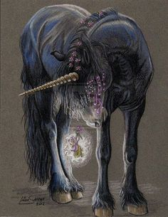 .oooh a black unicorn!