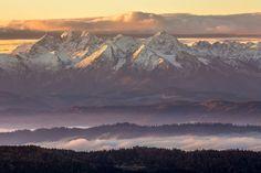 Widok z Gorców na Tatry - Najpiękniejsze szlaki w polskich górach. Zobacz zdjęcia, które naprawdę oddają ich urodę [GALERIA]