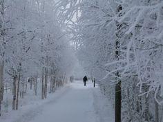 вопрос 2 и 3. пройтись пешком до пункта А. сделать что-то полезное. прогуливаться лучше в одиночестве.