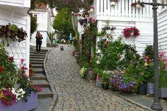 Photos of Old Stavanger