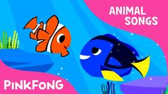 Clown Fish, Bluetang   Tropical Fish   Animal Songs   Pinkfong Songs for Children - YouTube