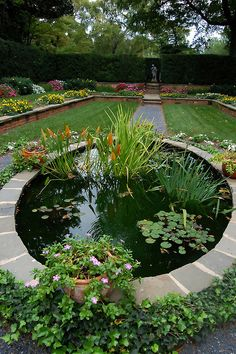 This water garden breaks up the long walkway and adds interest along the walk. To include fish in your pond you will need to have enough depth for the fish to survive the cold winter. This will vary by location.