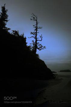 Moonlight by hypnoticphotos. @go4fotos