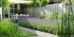 Gezellige binnentuin met lavendel en schaduwdoek.