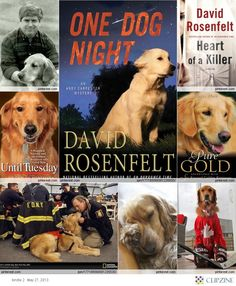 The lesser known of New York's canine heroes, comfort dogs, such as this golden retriever, help soothe those affected by the terrorist attacks of September 11,...