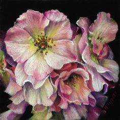 """Sally Holmes Beauties by Marie Tippets Pastel ~ 6"""" x 6"""""""
