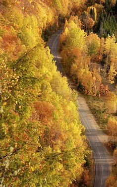 Beautiful Fall/Autumn Images: It's a beautiful world! Beautiful World, Beautiful Places, Beautiful Pictures, Autumn Scenes, All Nature, Flowers Nature, Best Seasons, Fall Pictures, Belle Photo