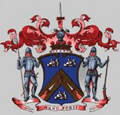 Clan Mackay - the Clan Mackay of Strathnaver, Lord Reay, Varrich Castle and the battles that make up some of the Clan History with pictures and paintings. Mackay Tartan, Family Crest, Northern Ireland, Origins, Family History, Scotland, Families, Irish, Disney Characters