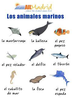 Learn Spanish (AILMadrid) on Twitter #Learnspanish  with this #vocabulary ! :D ☆ #spanishschool #Madrid #studyspanish #vocabulario