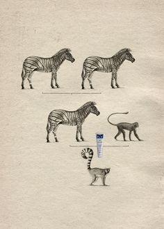 Una divertida campaña de lubricante que explica el origen de algunas especies animales