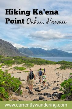Looking for a kid friendly hike on Oahu? Check out Kaena Point and look for albatross and monk seals!