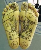 Foot reflexology relaxes, energizes and stimulate into internal organs and blood circulation that are forms of medical treatment. http://yogamassageschool.com/en/index.aspx