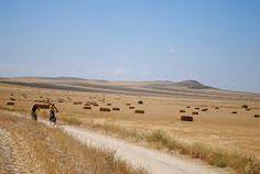 campos de castilla - Buscar con Google