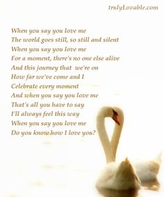 When you say you love me, the world goes still......     - Josh Groban.