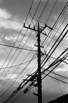 電柱 (The electric pole)