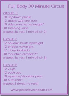 Full Body 30 Minute Circuit by Peace Love & Oats. on each side **right then left = 1 Fitness Tips, Fitness Motivation, Health Fitness, Motivation Quotes, Gym Workouts, At Home Workouts, Side Crunches, Circuit Training, Hitt Training
