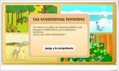 """""""Los ecosistemas terrestres"""" (Juego de Ciencias Naturales de Primaria)"""