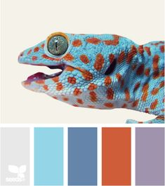 Great Color Palette website to browse for coordinating wall colors, etc
