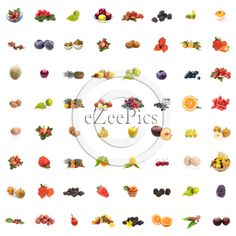 Collage of 64 pictures of different fruits on white background.